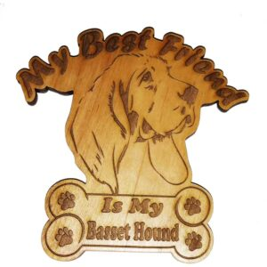 Basset Hound – My Best Friend Is My Dog Magnet
