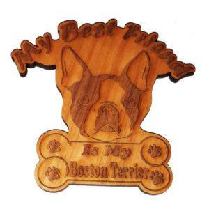 Boston Terrier – My Best Friend Is My Dog Magnet