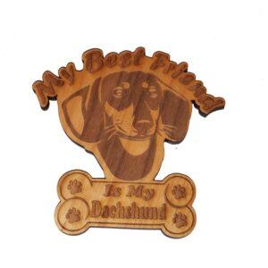 Dachshund – My Best Friend Is My Dog Magnet