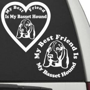 Basset Hound – My Best Friend Is My Dog Decal