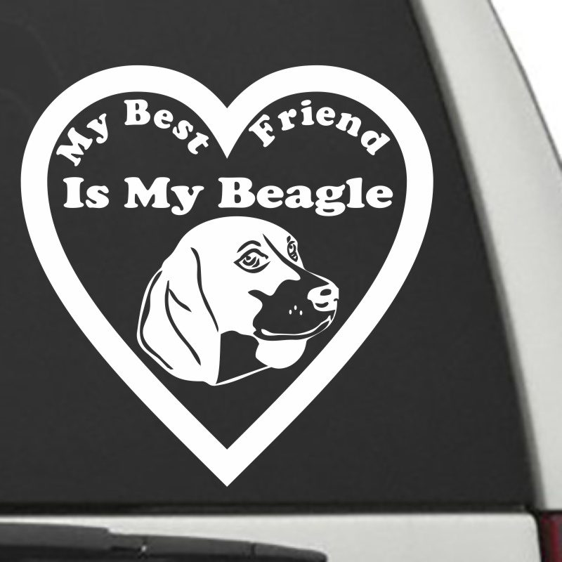 The Heart Shaped My Best Friend Is My Beagle dog decal shown on a car window.