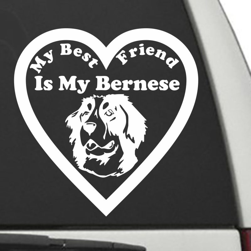 The Heart Shaped My Best Friend Is My Bernese Mountain Dog decal shown on a car window.