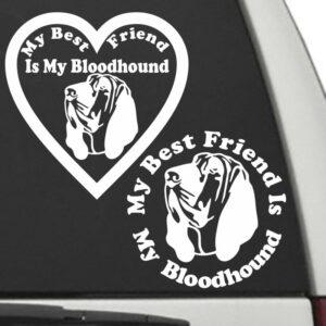 Bloodhound – My Best Friend Is My Dog Decal