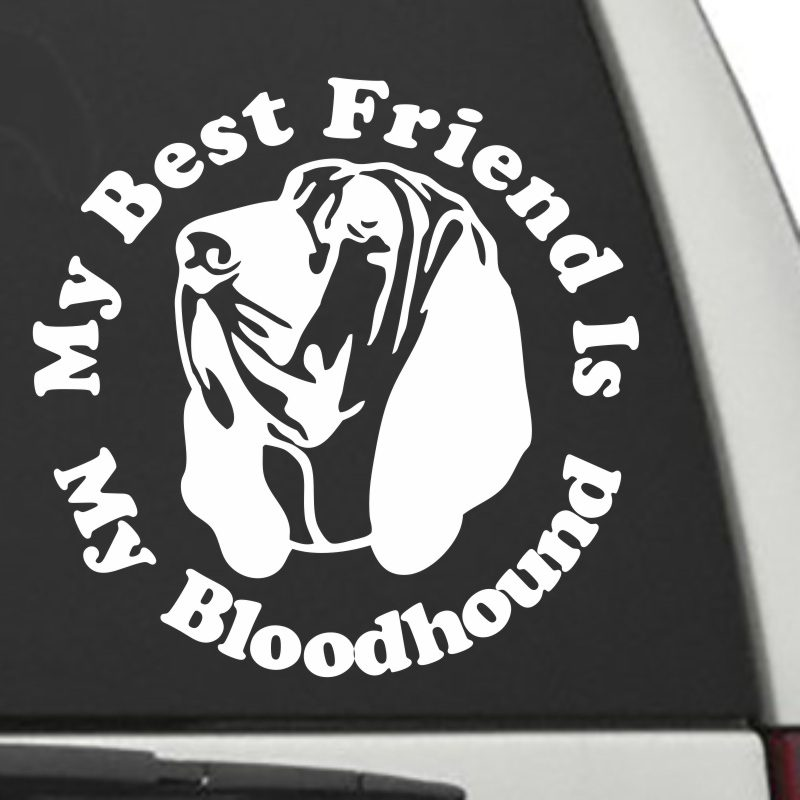 The Circle Shaped My Best Friend Is My Bloodhound dog decal shown on a car window.