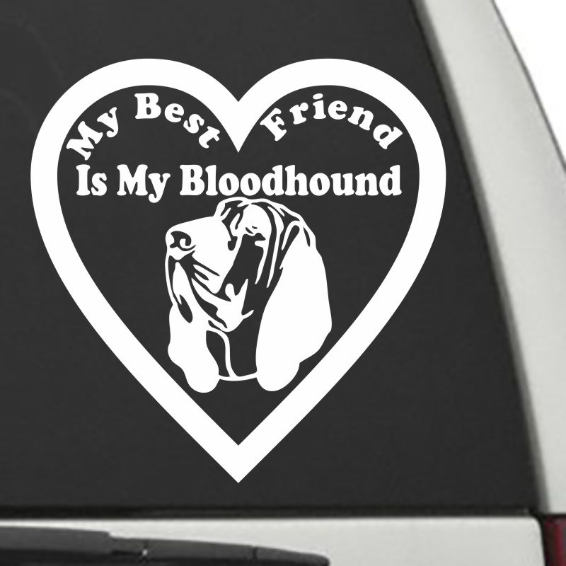 The Heart Shaped My Best Friend Is My Bloodhound dog decal shown on a car window.