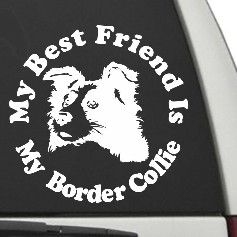 The Circle Shaped My Best Friend Is My Border Collie dog decal shown on a car window.