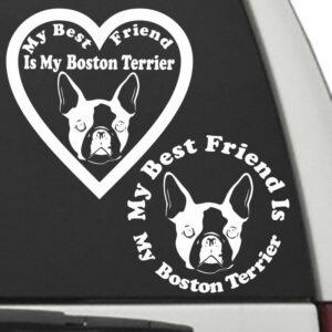 Boston Terrier – My Best Friend Is My Dog Decal