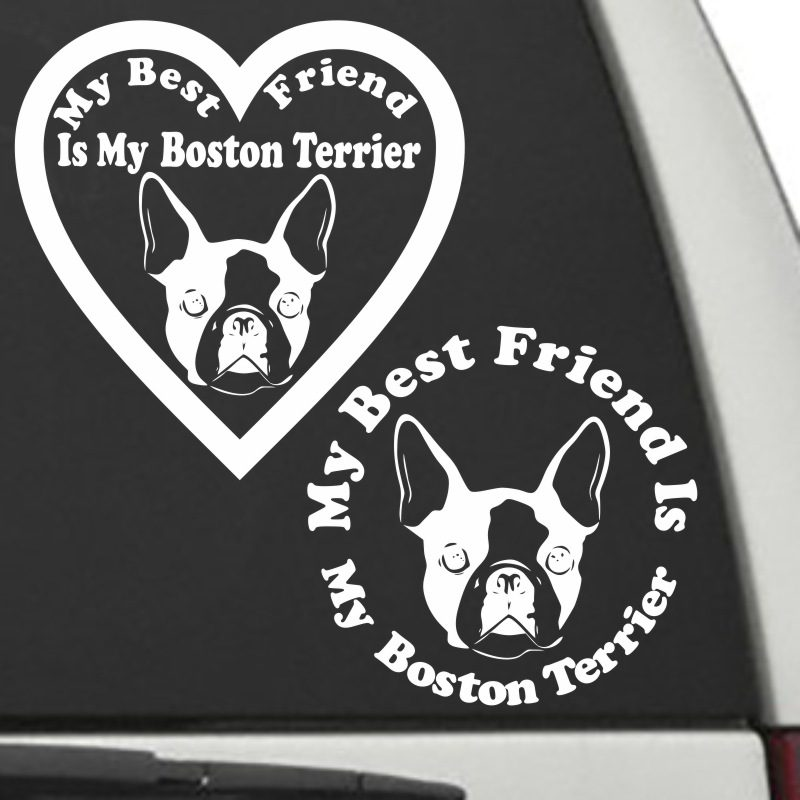 The Circle & Heart Shaped My Best Friend Is My Boston Terrier dog decals are shown together on a car window.