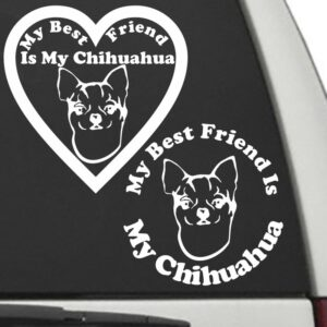 Chihuahua – My Best Friend Is My Dog Decal