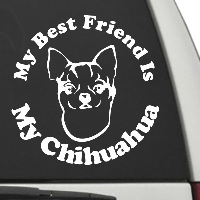 The Circle Shaped My Best Friend Is My Chihuahua dog decal shown on a car window.