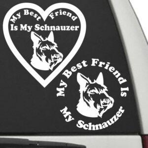 Schnauzer – My Best Friend Is My Dog Decal