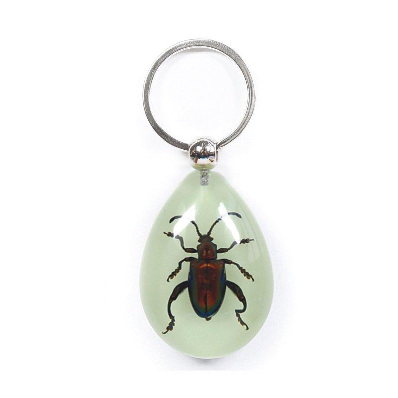 Beetle Jewel Frog Glow In Dark Key Chain RIYK0911